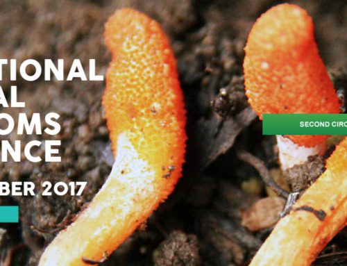 24-28 September 2017, Palermo, 9th Iternational Medicinal Mushrooms Conference