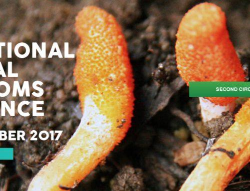 24-28 September 2017, Palermo, 9th Iternational Medicinal Mushrooms Conference