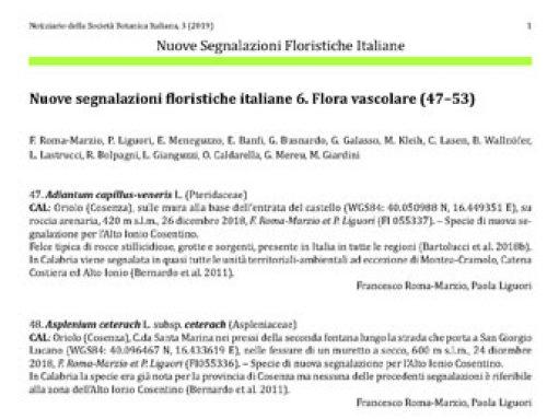 Flora vascolare (047-053)