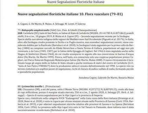 Flora vascolare (079-081)